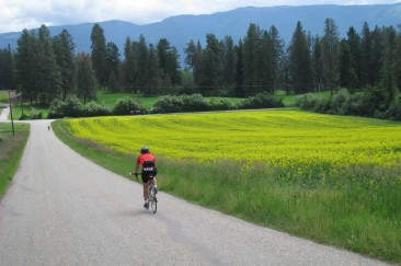 Cyclist approaching Schubert Road, North of Armstrong
